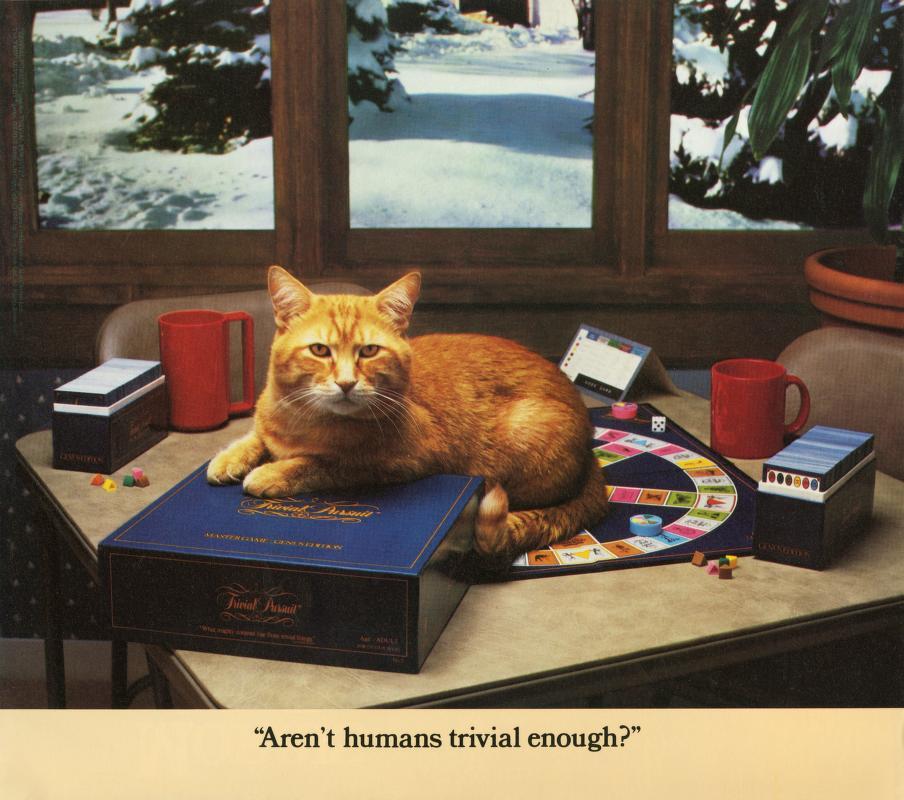 Morris Cat #7