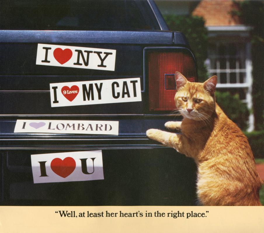 Morris Cat #9