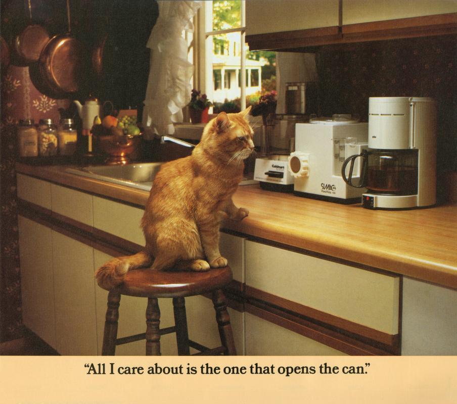 Morris Cat #6