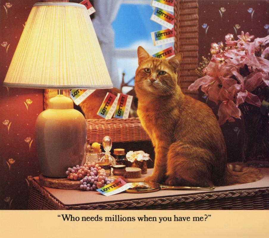 Morris Cat #12