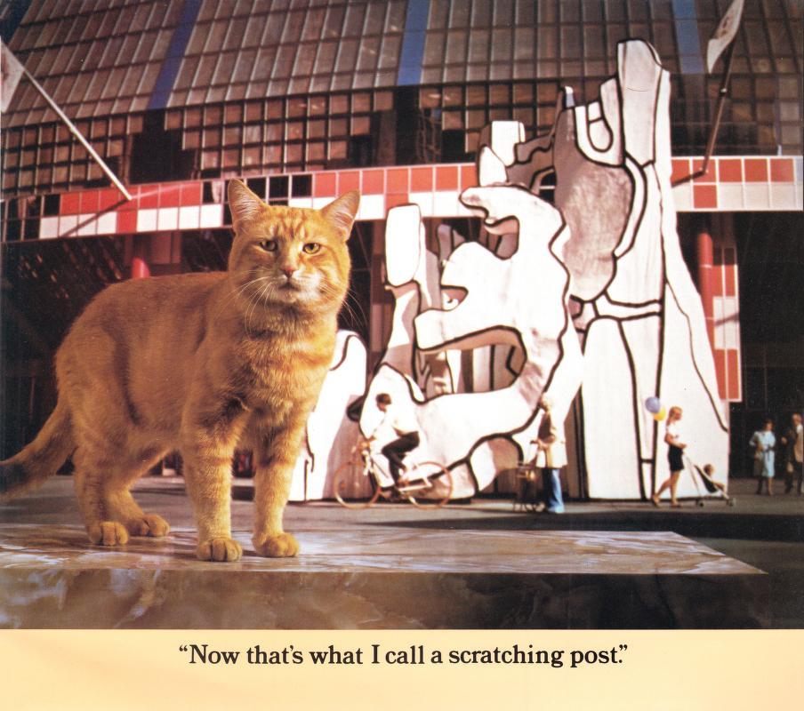 Morris Cat #11