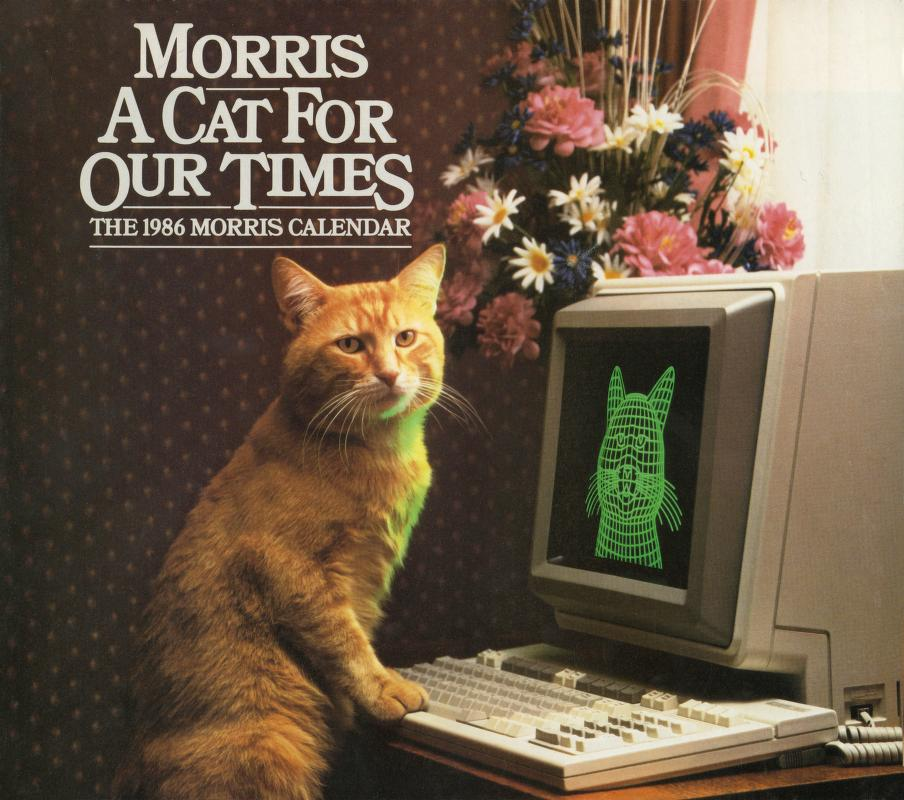 Morris Cat #1