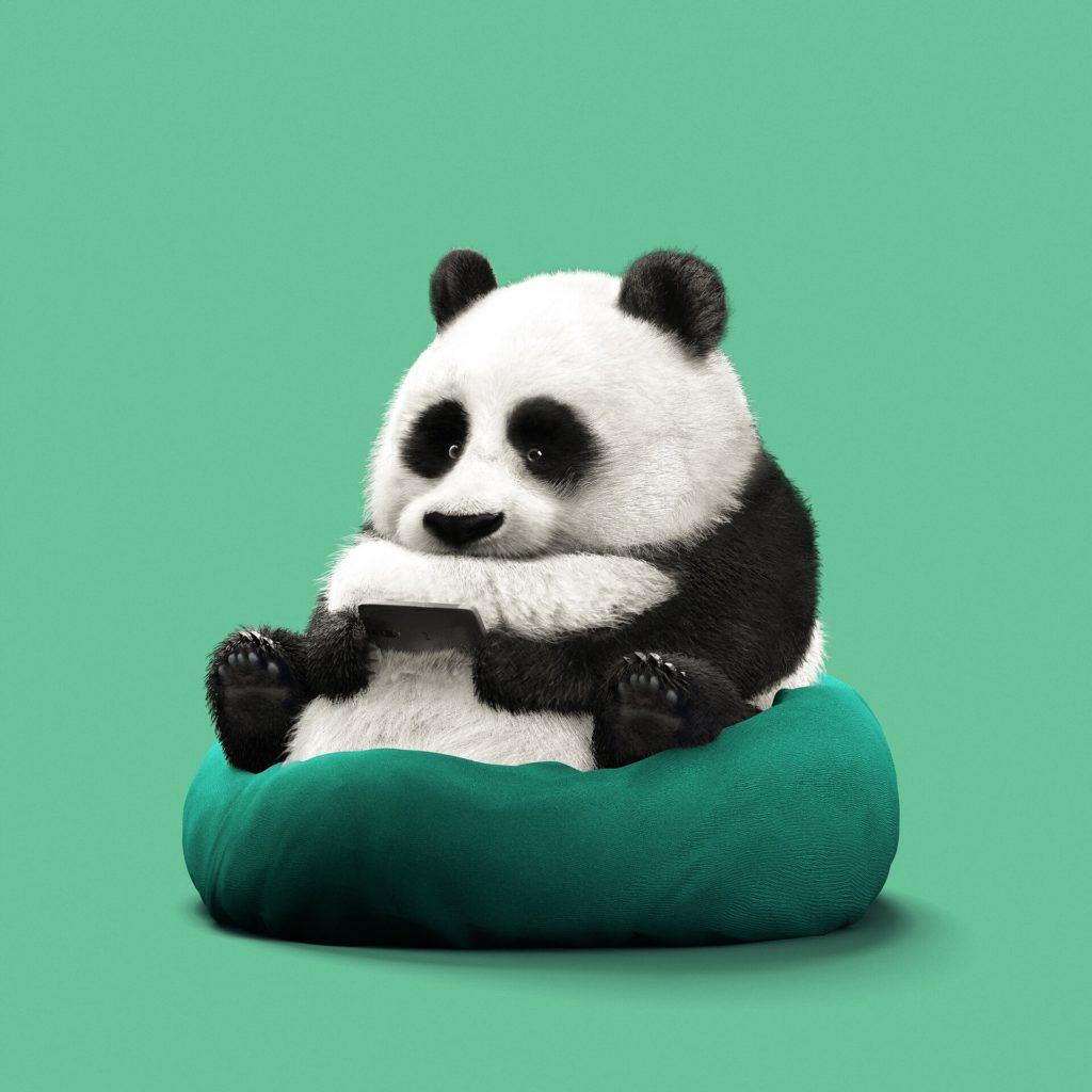 Панда играет в PS3