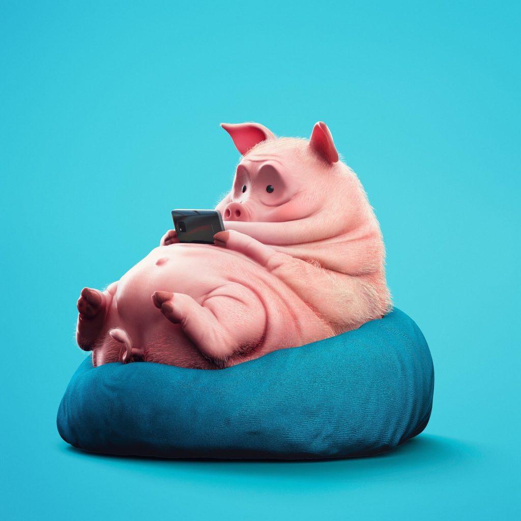 Свинья играет в мобильные телефон